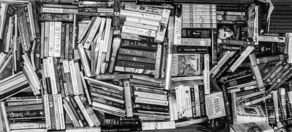 Escapades of a Bookworm